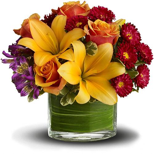 Flower Shop Promise